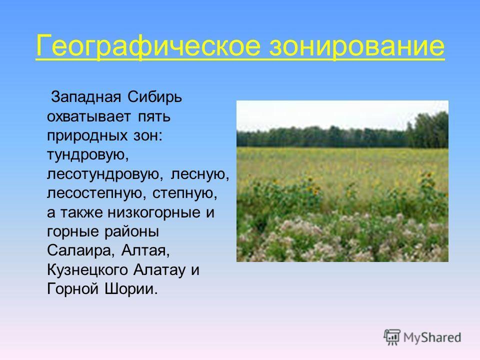 Географическое зонирование Западная Сибирь охватывает пять природных зон: тундровую, лесотундровую, лесную, лесостепную, степную, а также низкогорные и горные районы Салаира, Алтая, Кузнецкого Алатау и Горной Шории.