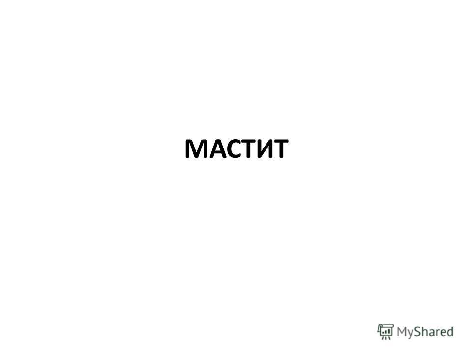 МАСТИТ