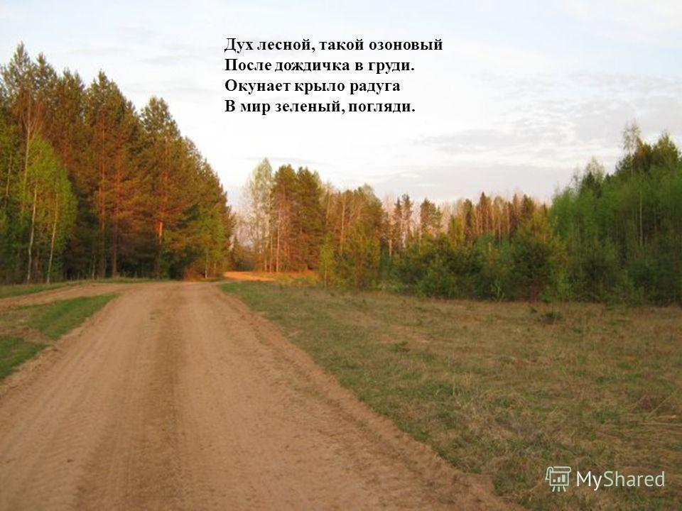 Дух лесной, такой озоновый После дождичка в груди. Окунает крыло радуга В мир зеленый, погляди.