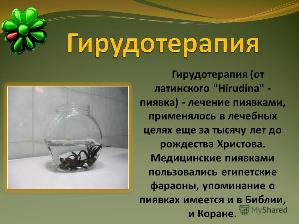 Гирудотерапия (от латинского Hirudina - пиявка) - лечение пиявками, применялось в лечебных целях еще за тысячу лет до рождества Христова. Медицинские пиявками пользовались египетские фараоны, упоминание о пиявках имеется и в Библии, и Коране.