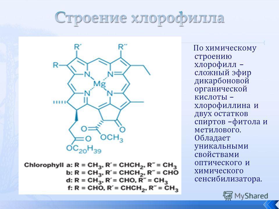 По химическому строению хлорофилл – сложный эфир дикарбоновой органической кислоты – хлорофиллина и двух остатков спиртов –фитола и метилового. Обладает уникальными свойствами оптического и химического сенсибилизатора.