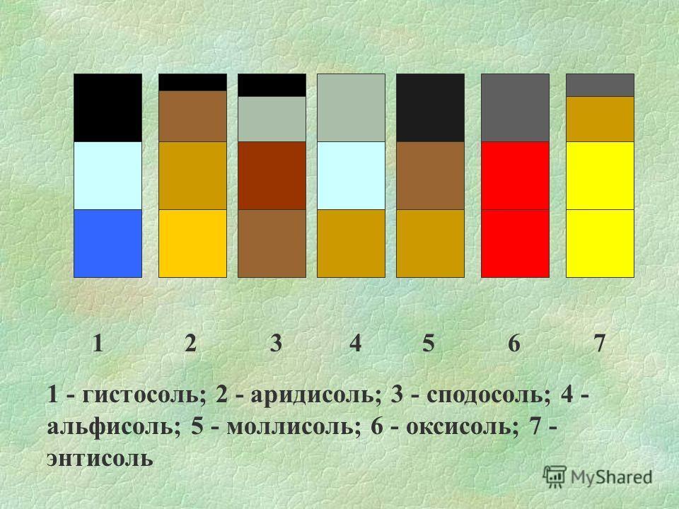 1 2 3 4 5 6 7 1 - гистосоль; 2 - аридисоль; 3 - сподосоль; 4 - альфисоль; 5 - моллисоль; 6 - оксисоль; 7 - энтисоль