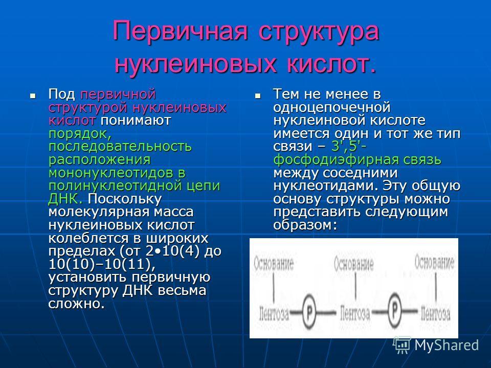 Первичная структура нуклеиновых кислот. Под первичной структурой нуклеиновых кислот понимают порядок, последовательность расположения мононуклеотидов в полинуклеотидной цепи ДНК. Поскольку молекулярная масса нуклеиновых кислот колеблется в широких пр