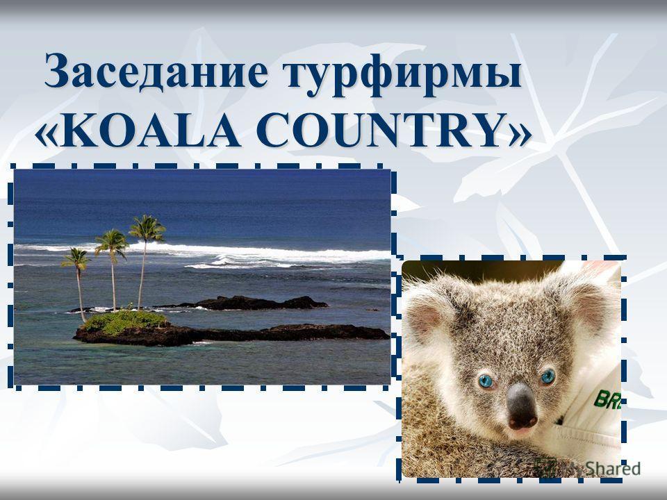 Заседание турфирмы «KOALA COUNTRY»