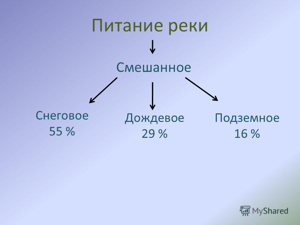 Питание реки Смешанное Снеговое 55 % Дождевое 29 % Подземное 16 %