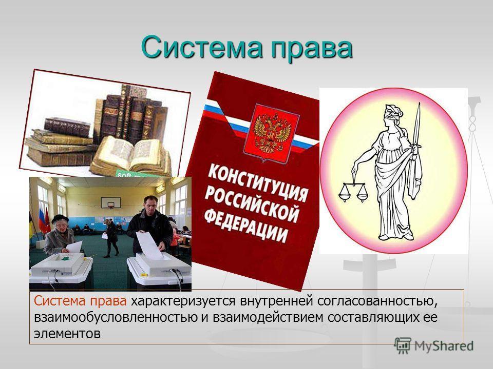 Система права Система права характеризуется внутренней согласованностью, взаимообусловленностью и взаимодействием составляющих ее элементов