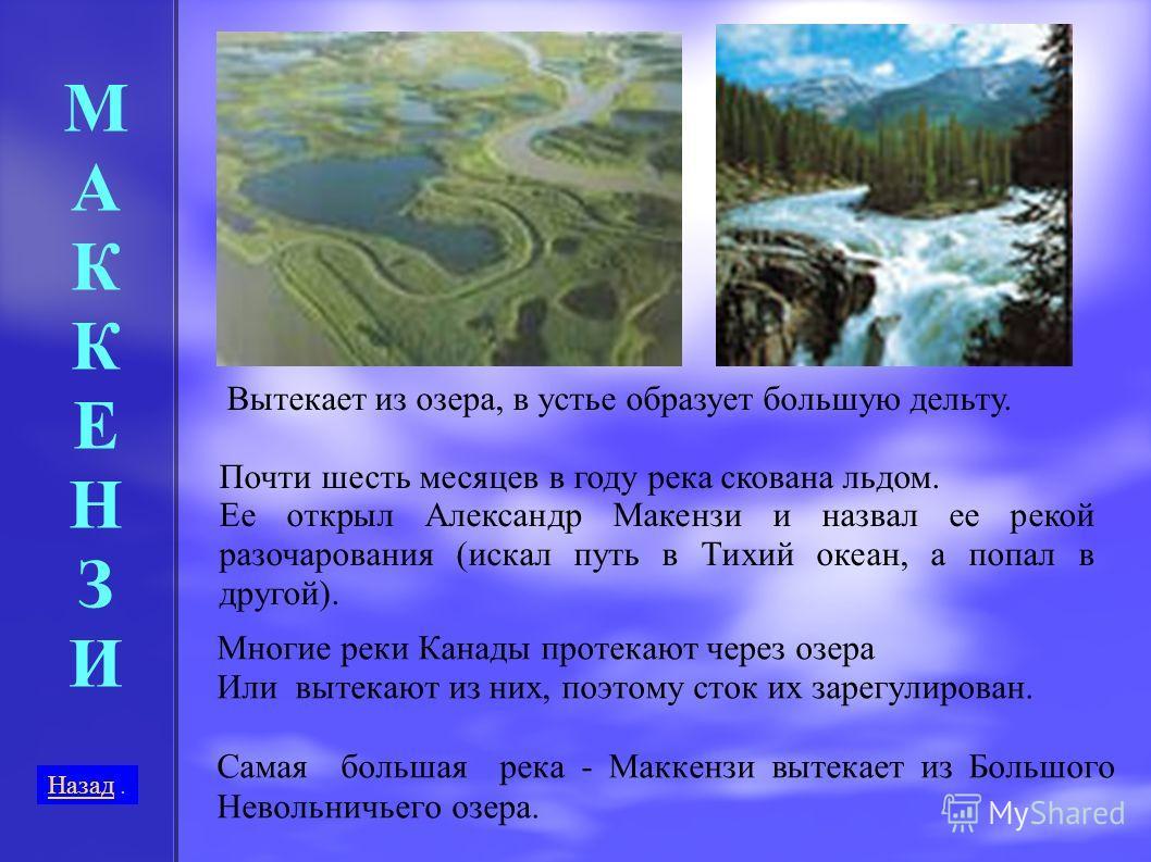 Многие реки Канады протекают через озера Или вытекают из них, поэтому сток их зарегулирован. Самая большая река - Маккензи вытекает из Большого Невольничьего озера. МАККЕНЗИ МАККЕНЗИ Вытекает из озера, в устье образует большую дельту. Почти шесть мес