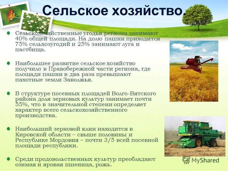 Сельскохозяйственные угодья региона занимают 40% общей площади. На долю пашни приходится 75% сельхозугодий и 25% занимают луга и пастбища. Наибольшее развитие сельское хозяйство получило в Правобережной части региона, где площади пашни в два раза пре
