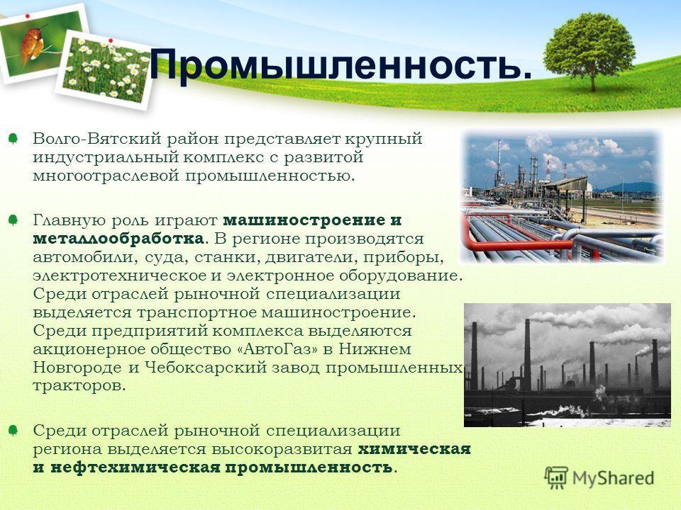 Волго-Вятский район представляет крупный индустриальный комплекс с развитой многоотраслевой промышленностью. Главную роль играют машиностроение и металлообработка. В регионе производятся автомобили, суда, станки, двигатели, приборы, электротехническо