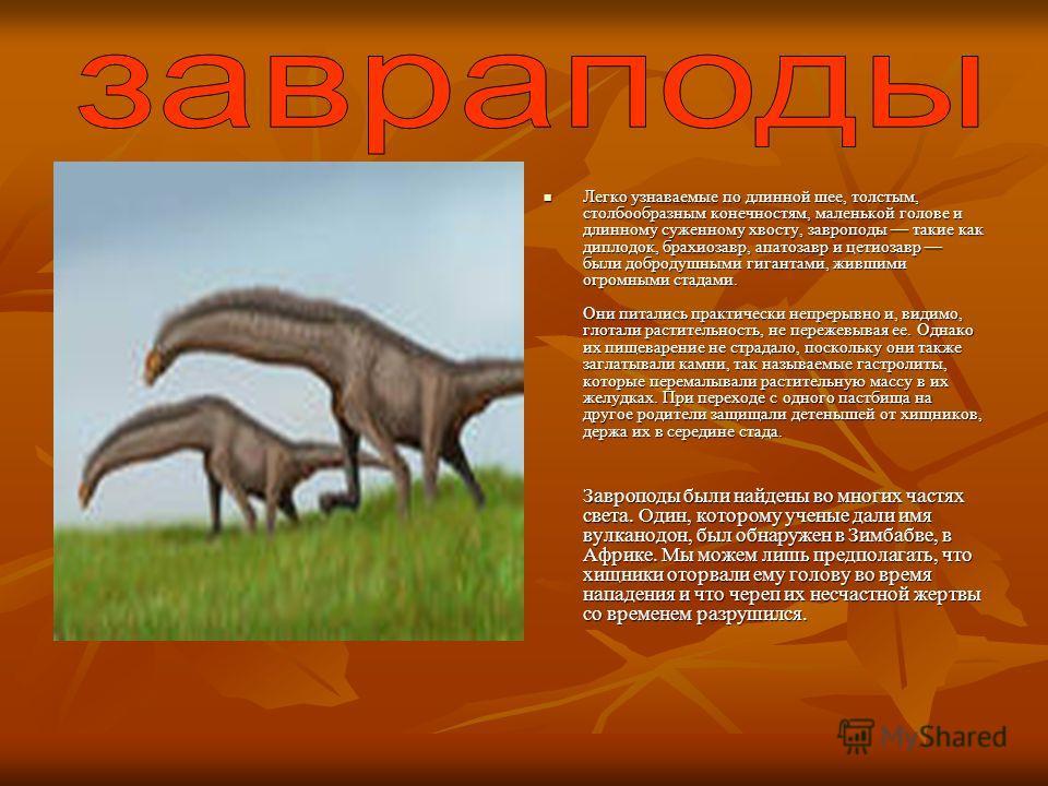 Легко узнаваемые по длинной шее, толстым, столбообразным конечностям, маленькой голове и длинному суженному хвосту, завроподы такие как диплодок, брахиозавр, апатозавр и цетиозавр были добродушными гигантами, жившими огромными стадами. Они питались п