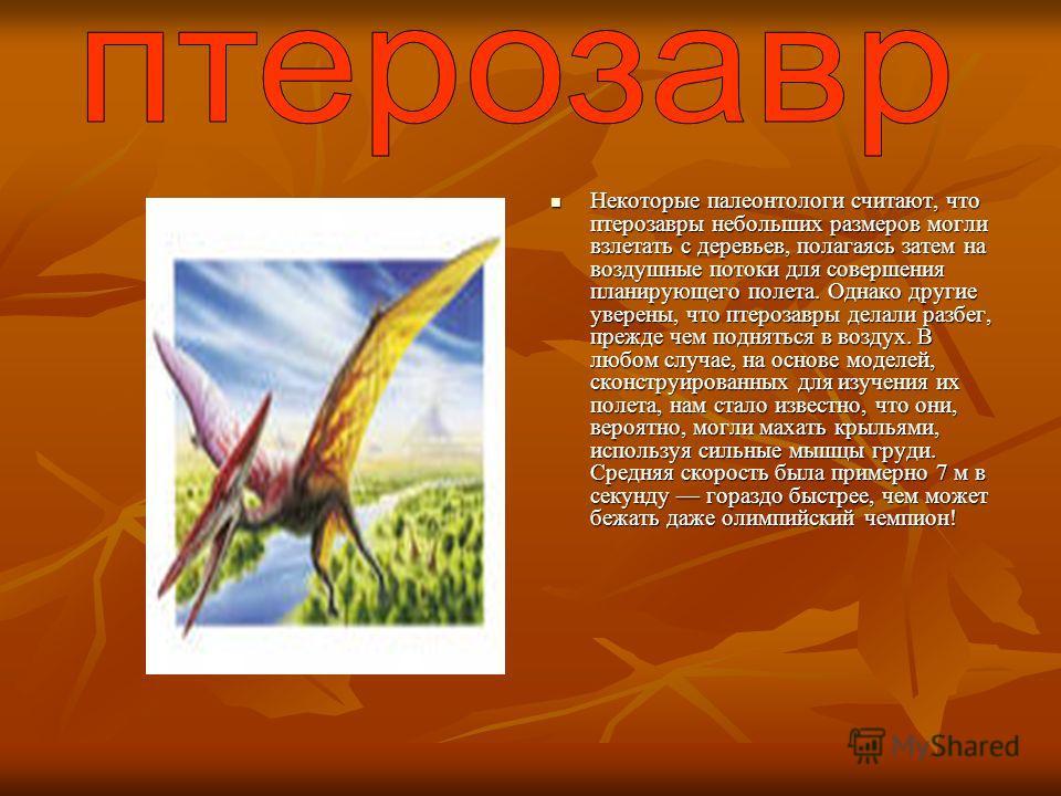 Некоторые палеонтологи считают, что птерозавры небольших размеров могли взлетать с деревьев, полагаясь затем на воздушные потоки для совершения планирующего полета. Однако другие уверены, что птерозавры делали разбег, прежде чем подняться в воздух. В