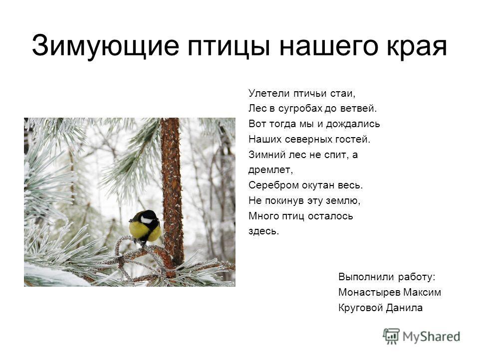 Зимующие птицы нашего края Улетели птичьи стаи, Лес в сугробах до ветвей. Вот тогда мы и дождались Наших северных гостей. Зимний лес не спит, а дремлет, Серебром окутан весь. Не покинув эту землю, Много птиц осталось здесь. Выполнили работу: Монастыр