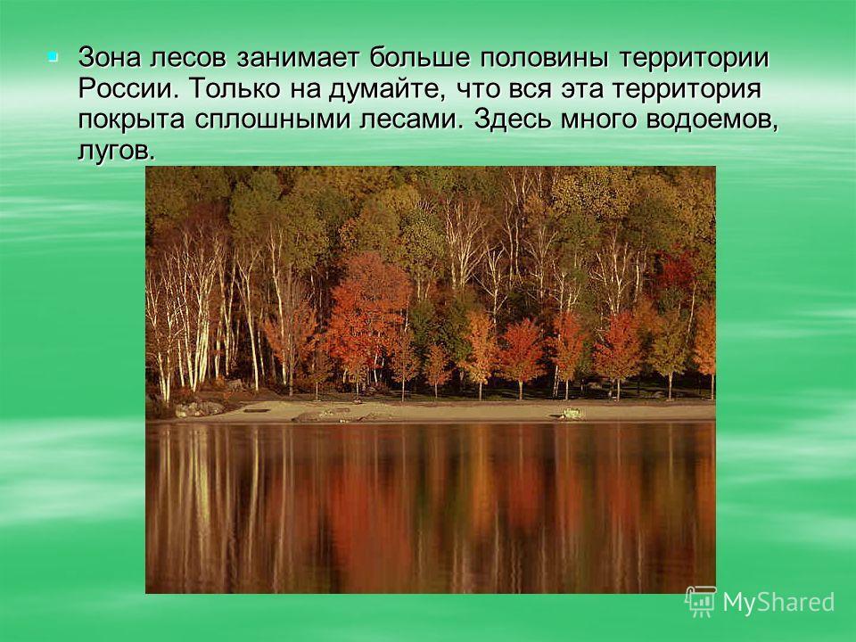 Зона лесов занимает больше половины территории России. Только на думайте, что вся эта территория покрыта сплошными лесами. Здесь много водоемов, лугов. Зона лесов занимает больше половины территории России. Только на думайте, что вся эта территория п