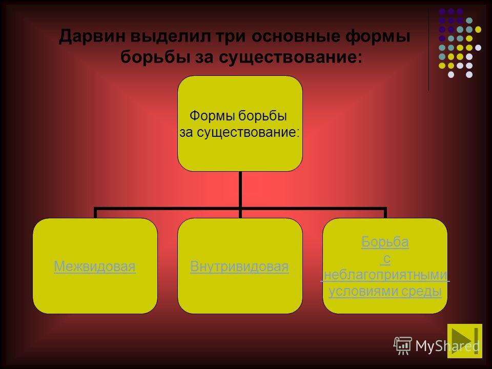 Дарвин выделил три основные формы борьбы за существование: Формы борьбы за существование: МежвидоваяВнутривидовая Борьба с неблагоприятными условиями среды