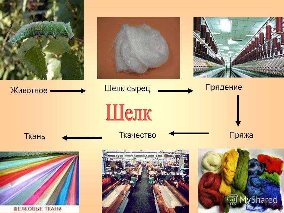 Животное Шелк-сырец Прядение ПряжаТкачество Ткань