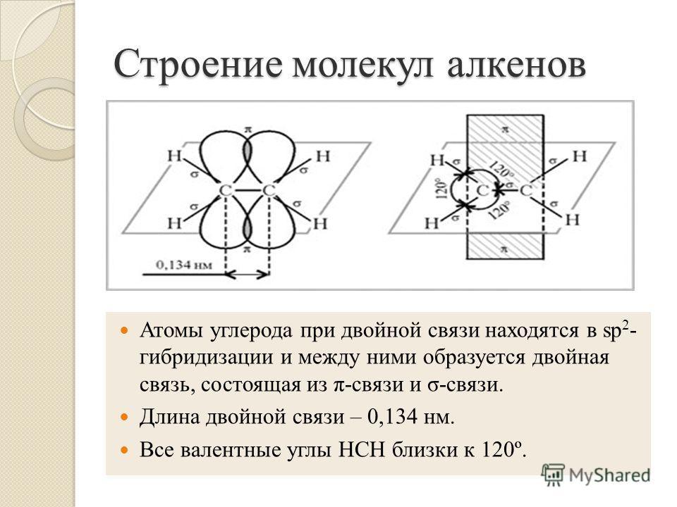 Строение молекул алкенов Атомы углерода при двойной связи находятся в sp 2 - гибридизации и между ними образуется двойная связь, состоящая из π-связи и σ-связи. Длина двойной связи – 0,134 нм. Все валентные углы НСН близки к 120º.