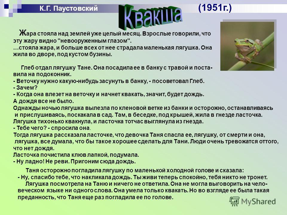 К.Г. Паустовский (1951г.) Ж ара стояла над землей уже целый месяц. Взрослые говорили, что эту жару видно