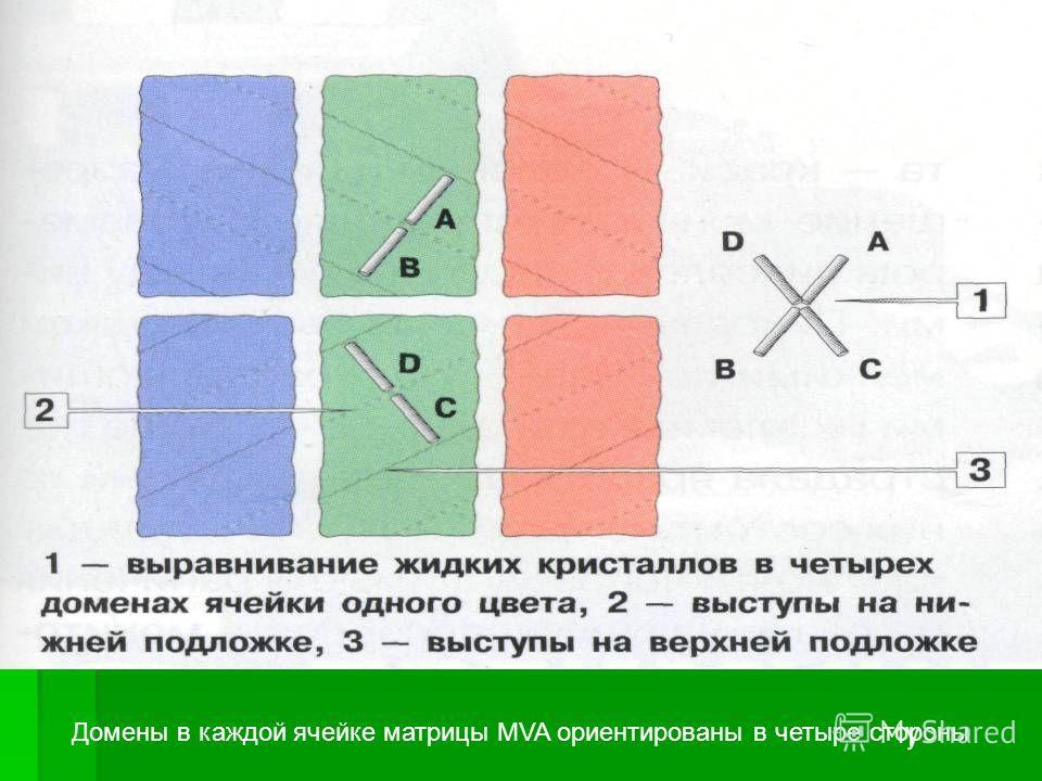 Домены в каждой ячейке матрицы MVA ориентированы в четыре стороны