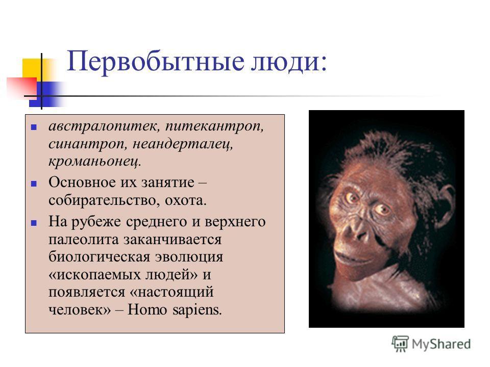 Первобытные люди: австралопитек, питекантроп, синантроп, неандерталец, кроманьонец. Основное их занятие – собирательство, охота. На рубеже среднего и