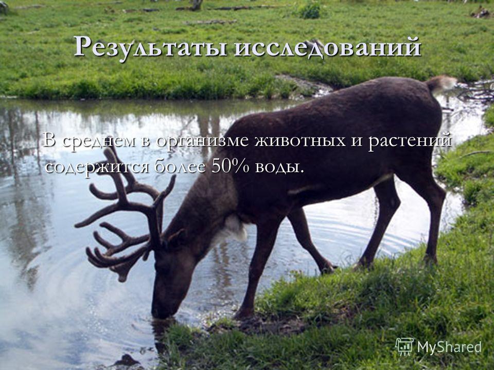 В среднем в организме животных и растений содержится более 50% воды. В среднем в организме животных и растений содержится более 50% воды. Результаты исследований