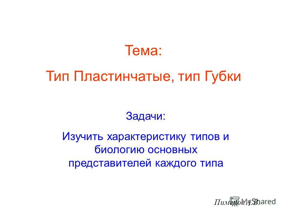 Тема: Тип Пластинчатые, тип Губки Задачи: Изучить характеристику типов и биологию основных представителей каждого типа Пименов А.В.