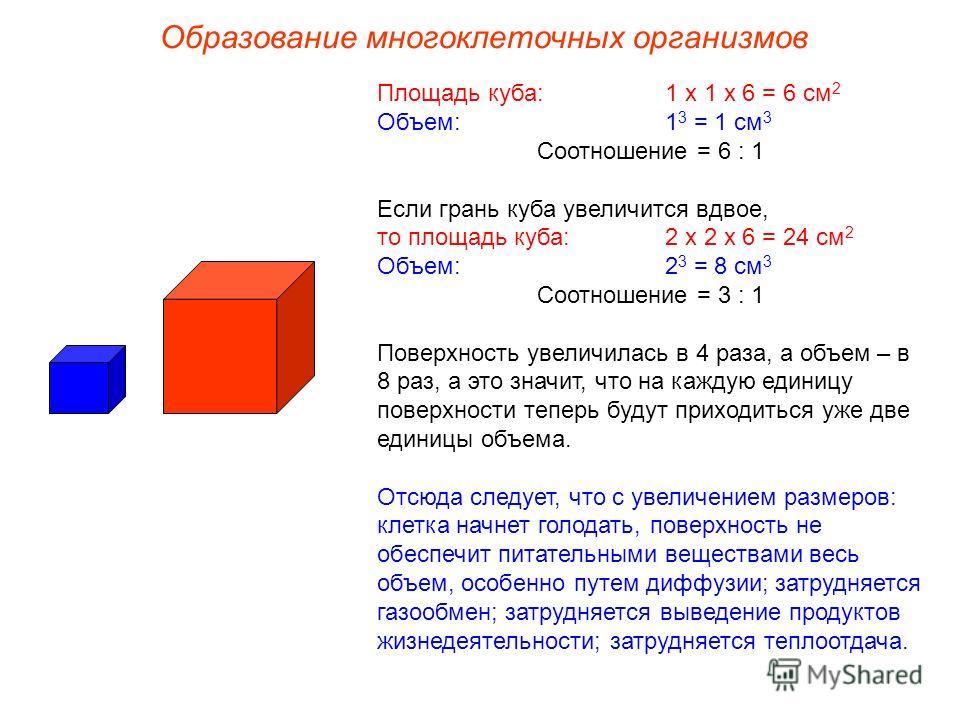 Площадь куба: 1 х 1 х 6 = 6 см 2 Объем:1 3 = 1 см 3 Соотношение = 6 : 1 Если грань куба увеличится вдвое, то площадь куба:2 х 2 х 6 = 24 см 2 Объем:2 3 = 8 см 3 Соотношение = 3 : 1 Поверхность увеличилась в 4 раза, а объем – в 8 раз, а это значит, чт