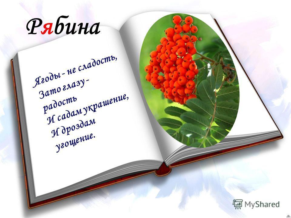 Рябина Ягоды - не сладость, Зато глазу - радость И садам украшение, И дроздам угощение.