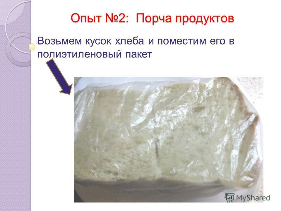Опыт 2: Порча продуктов Возьмем кусок хлеба и поместим его в полиэтиленовый пакет