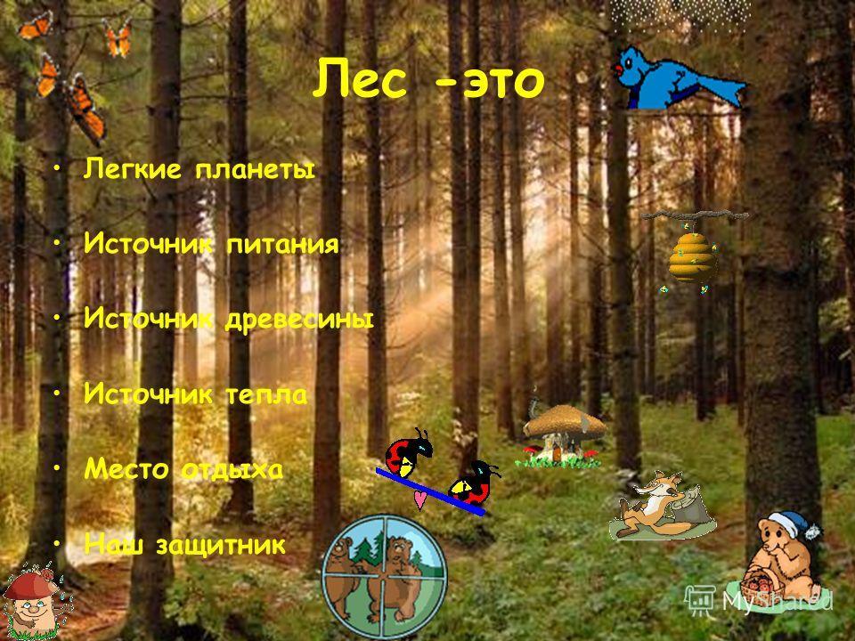 Лес -это Легкие планеты Источник питания Источник древесины Источник тепла Место отдыха Наш защитник