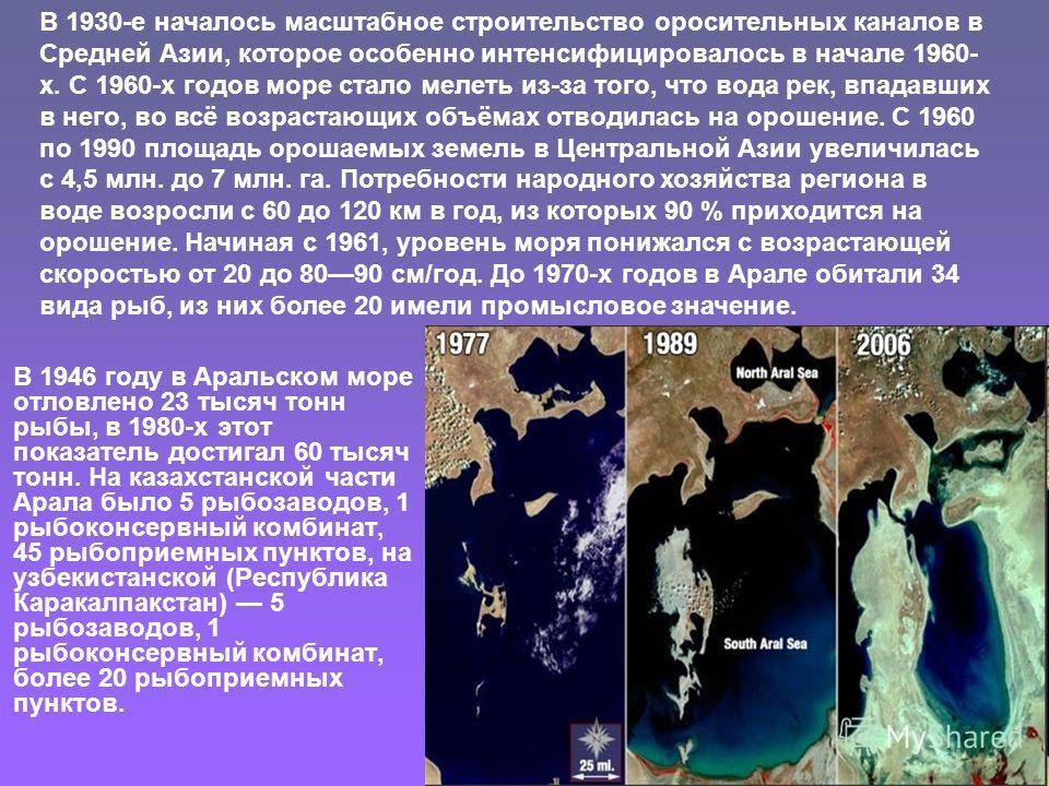 В 1946 году в Аральском море отловлено 23 тысяч тонн рыбы, в 1980-х этот показатель достигал 60 тысяч тонн. На казахстанской части Арала было 5 рыбозаводов, 1 рыбоконсервный комбинат, 45 рыбоприемных пунктов, на узбекистанской (Республика Каракалпакс