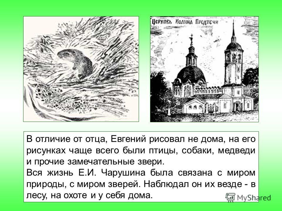 В отличие от отца, Евгений рисовал не дома, на его рисунках чаще всего были птицы, собаки, медведи и прочие замечательные звери. Вся жизнь Е.И. Чарушина была связана с миром природы, с миром зверей. Наблюдал он их везде - в лесу, на охоте и у себя до
