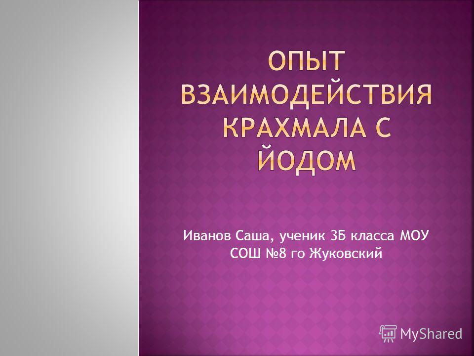 Иванов Саша, ученик 3Б класса МОУ СОШ 8 го Жуковский