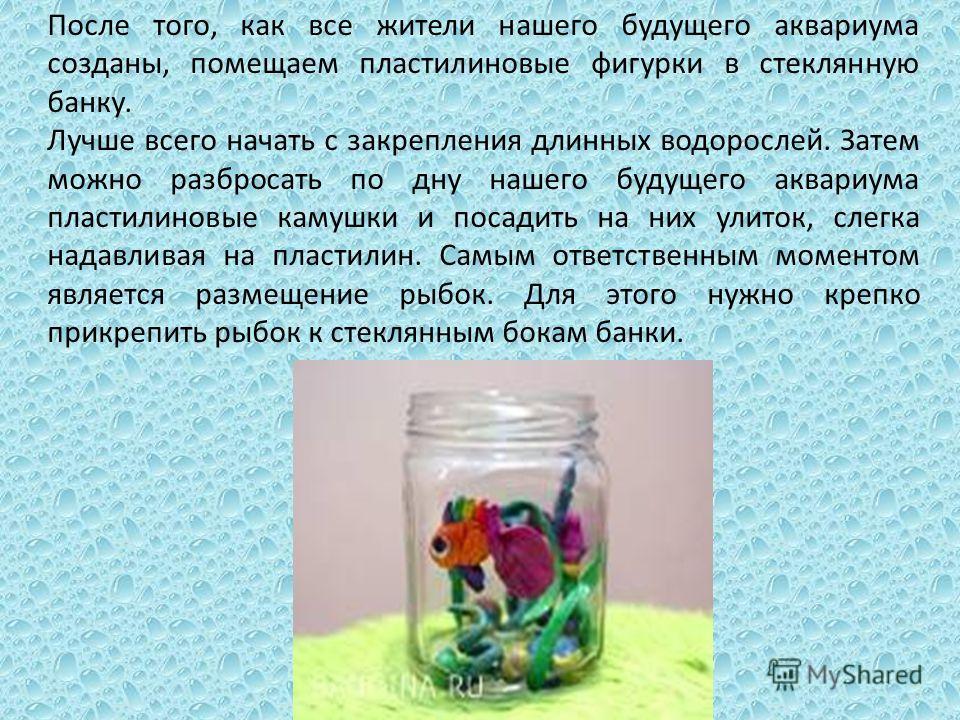 После того, как все жители нашего будущего аквариума созданы, помещаем пластилиновые фигурки в стеклянную банку. Лучше всего начать с закрепления длинных водорослей. Затем можно разбросать по дну нашего будущего аквариума пластилиновые камушки и поса