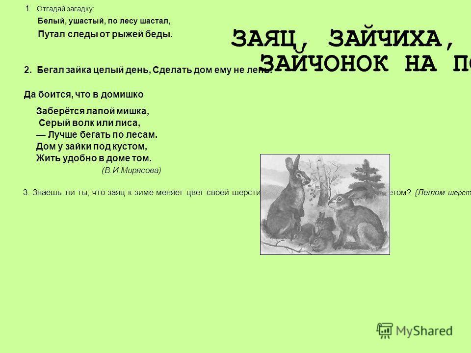 1. Отгадай загадку: Белый, ушастый, по лесу шастал, Путал следы от рыжей беды. 2. Бегал зайка целый день, Сделать дом ему не лень. Да боится, что в домишко ЗАЯЦ, ЗАЙЧИХА, ЗАЙЧОНОК НА ПОЛЯНКЕ Заберётся лапой мишка, Серый волк или лиса, Лучше бегать по
