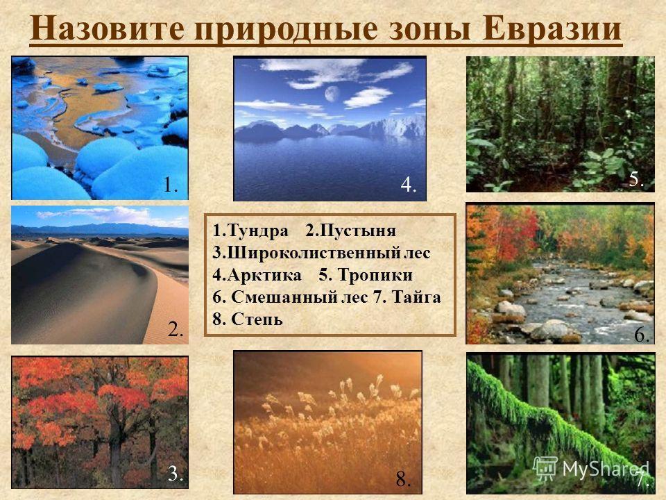 Назовите природные зоны Евразии 1.Тундра 2.Пустыня 3.Широколиственный лес 4.Арктика 5. Тропики 6. Смешанный лес 7. Тайга 8. Степь 1. 2. 3. 4. 5. 7. 6. 8.