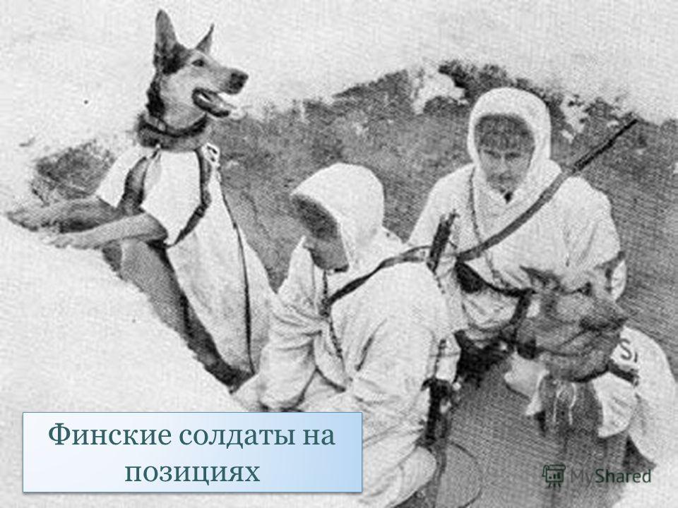 Финские солдаты на позициях
