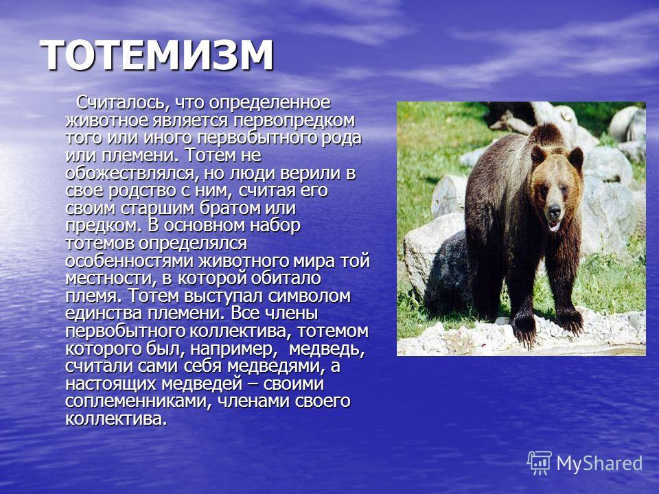 ТОТЕМИЗМ Считалось, что определенное животное является первопредком того или иного первобытного рода или племени. Тотем не обожествлялся, но люди верили в свое родство с ним, считая его своим старшим братом или предком. В основном набор тотемов опред