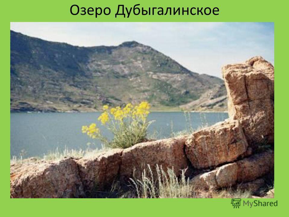 Озеро Дубыгалинское