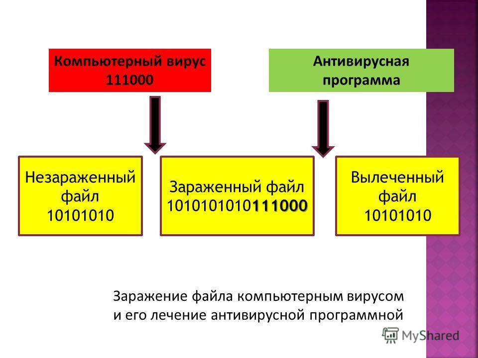 Компьютерный вирус 111000 Антивирусная программа Незараженный файл 10101010 Зараженный файл 111000 1010101010111000 Вылеченный файл 10101010 Заражение файла компьютерным вирусом и его лечение антивирусной программной