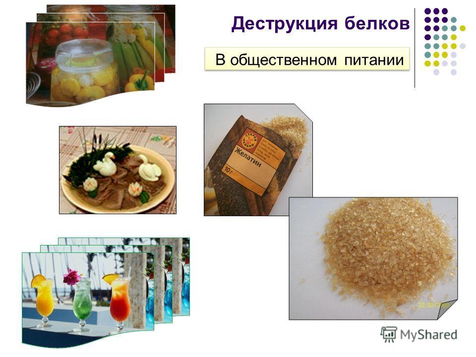 Деструкция белков В общественном питании В общественном питании