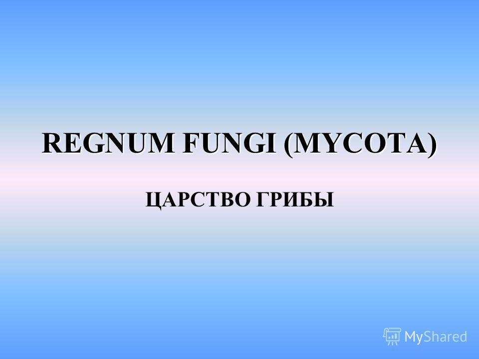 REGNUM FUNGI (MYCOTA) ЦАРСТВО ГРИБЫ