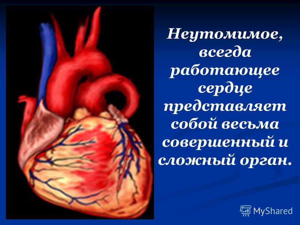 Неутомимое, всегда работающее сердце представляет собой весьма совершенный и сложный орган.