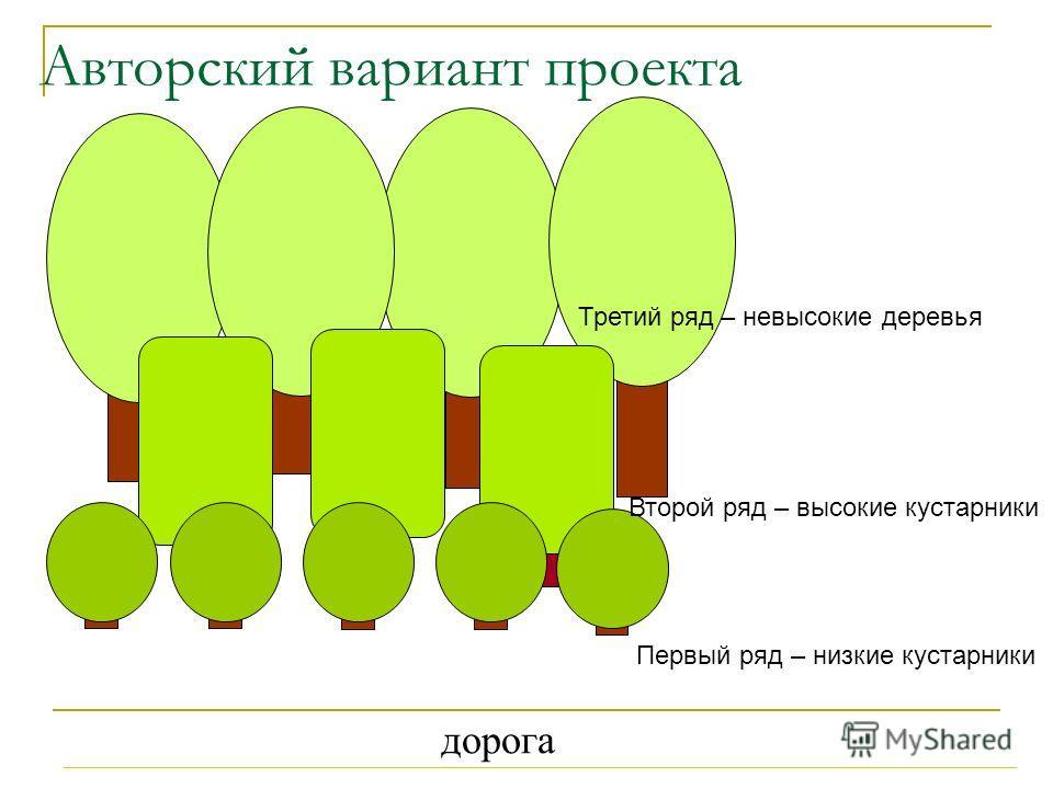Авторский вариант проекта дорога Первый ряд – низкие кустарники Третий ряд – невысокие деревья Второй ряд – высокие кустарники
