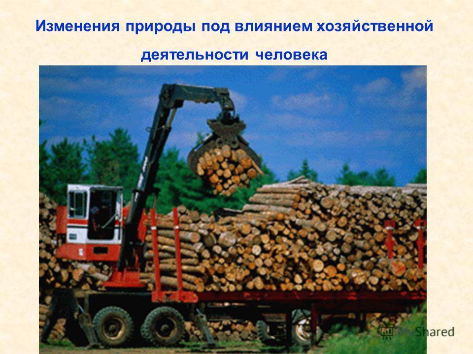 Изменения природы под влиянием хозяйственной деятельности человека