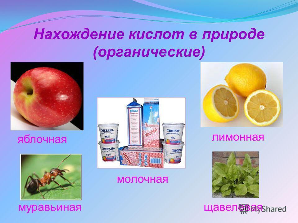 Нахождение кислот в природе (органические) яблочная щавелеваямуравьиная лимонная молочная