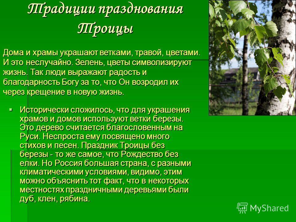 Исторически сложилось, что для украшения храмов и домов используют ветки березы. Это дерево считается благословенным на Руси. Неспроста ему посвящено много стихов и песен. Праздник Троицы без березы - то же самое, что Рождество без елки. Но Россия бо
