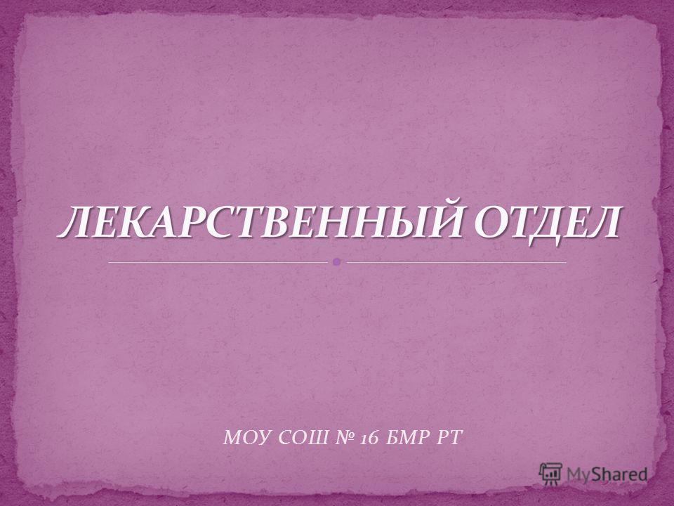 МОУ СОШ 16 БМР РТ
