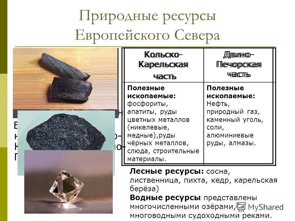 Природные ресурсы Европейского Севера Используя текст учебника(§21) и карты атласа, определите какими природными ресурсами обеспечен Европейский Север на примере Кольско- Карельской и Двино- Печорской частей. Кольско- Карельская часть Двино- Печорска