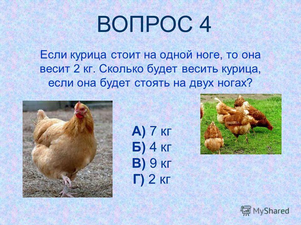 Если курица стоит на одной ноге, то она весит 2 кг. Сколько будет весить курица, если она будет стоять на двух ногах? А) 7 кг Б) 4 кг В) 9 кг Г) 2 кг ВОПРОС 4