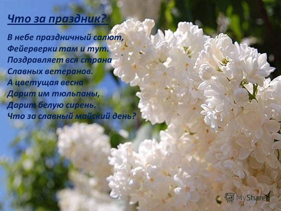 Что за праздник? В небе праздничный салют, Фейерверки там и тут. Поздравляет вся страна Славных ветеранов. А цветущая весна Дарит им тюльпаны, Дарит белую сирень. Что за славный майский день?